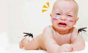 Thuốc chống muỗi, côn trùng rất gây hại cho sức khỏe